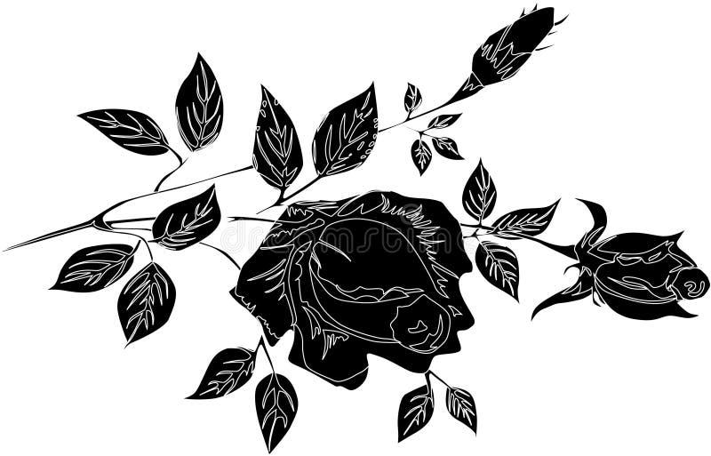 Silhouette de fleur de Rose illustration stock