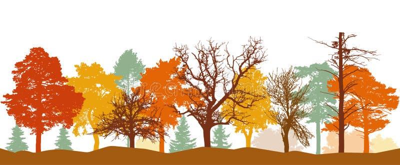 Silhouette de forêt en automne Arbres nus, arbres dans l'orange, couleurs jaunes et rouges Illustration de vecteur illustration stock