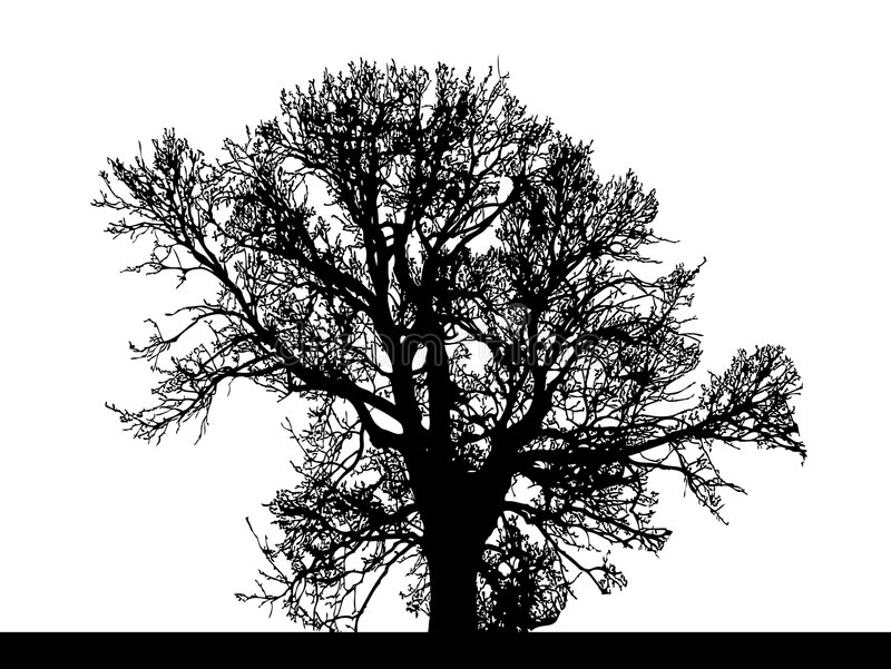 Silhouette de grand arbre illustration stock