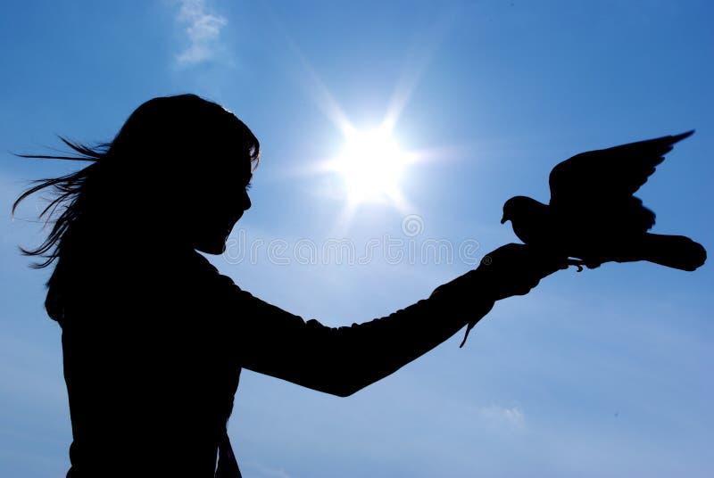 Silhouette de gril et d'oiseau photo libre de droits