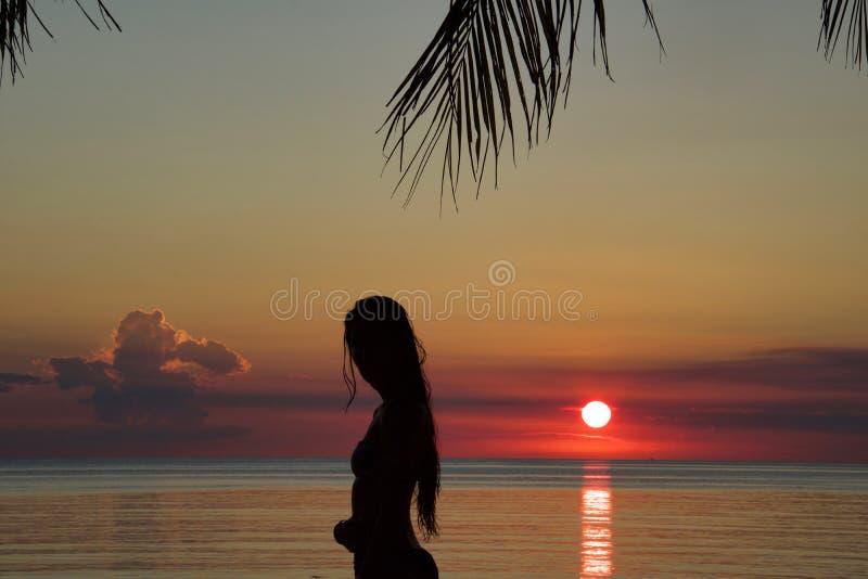 Silhouette de jeune femme se tenant sur la plage dans le bikini au su photographie stock