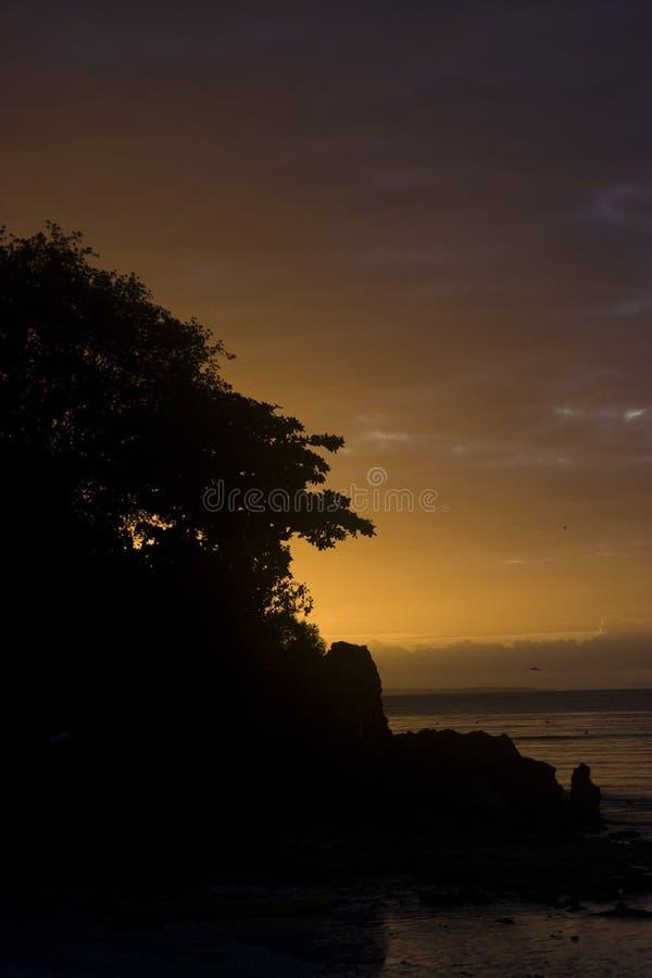 Silhouette de lever de soleil photos libres de droits