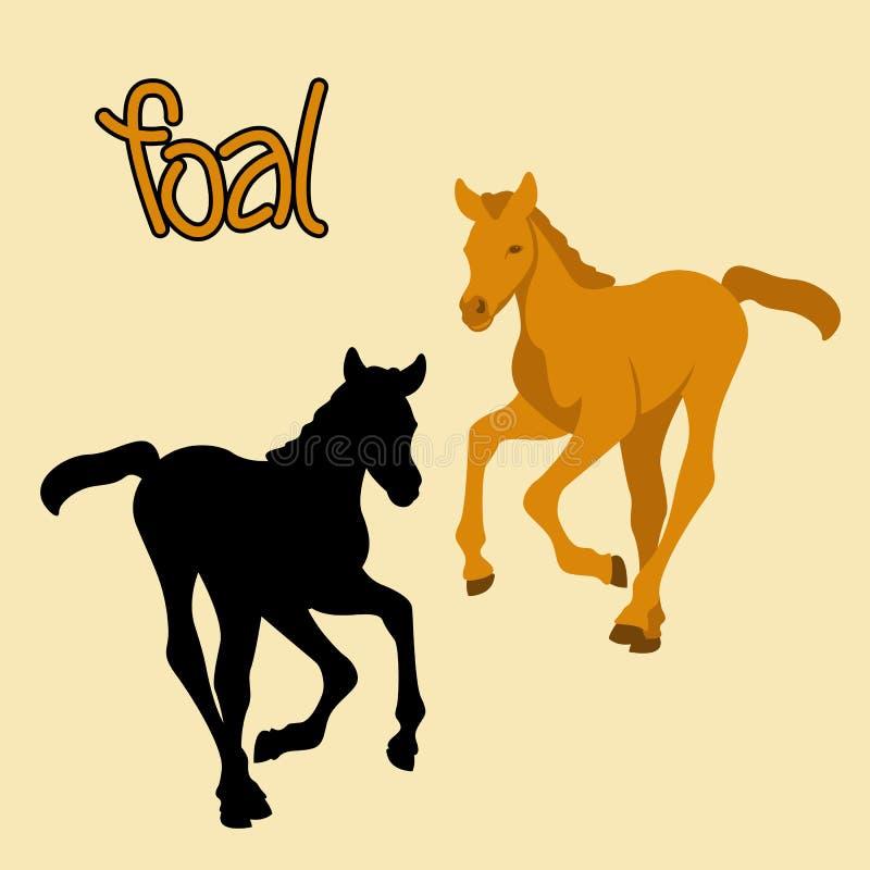 Silhouette de noir d'illustration de vecteur de poulain de cheval illustration de vecteur