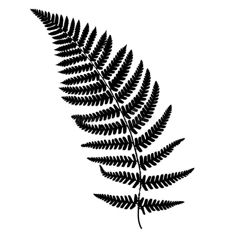 Silhouette de noir de fronde de fougère illustration de vecteur