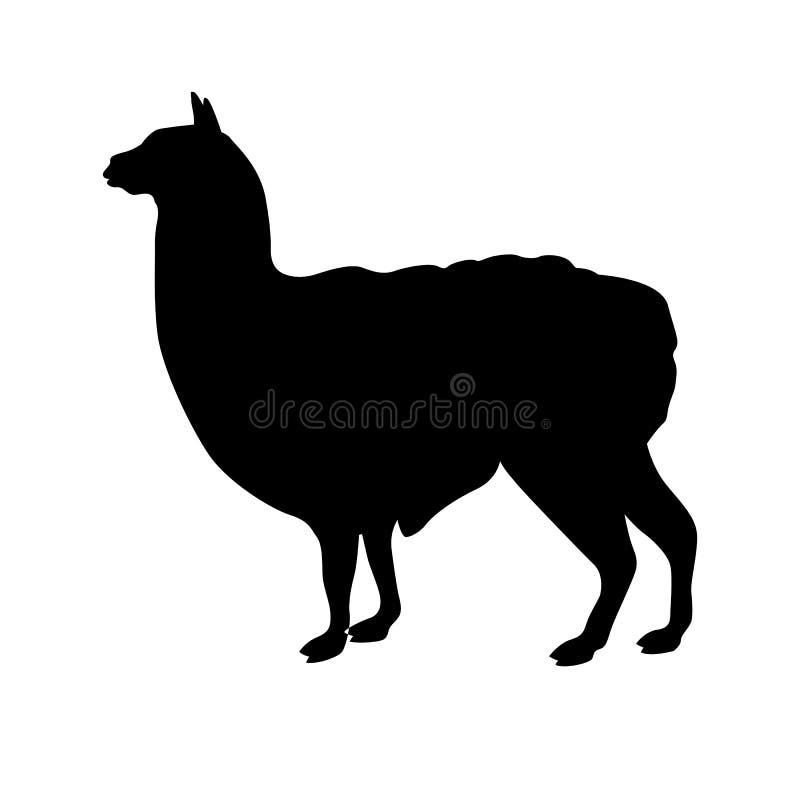 Silhouette de noir de vecteur de lama illustration stock