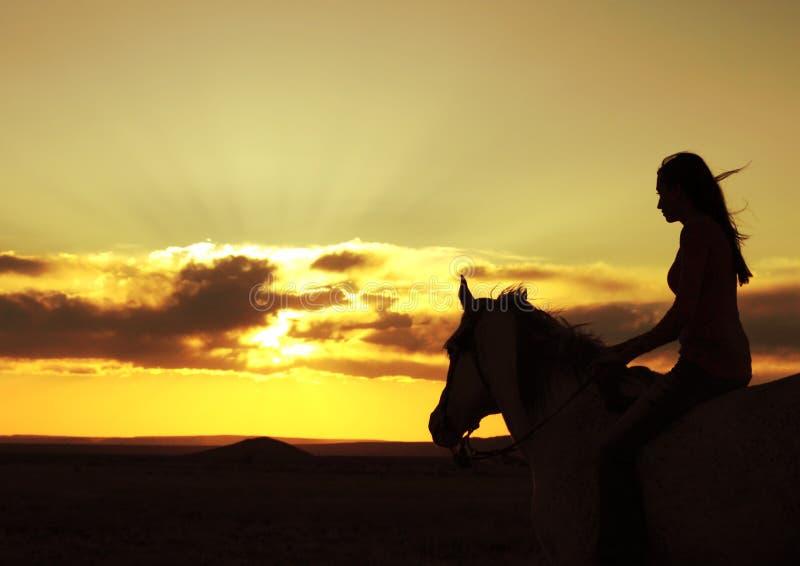 Silhouette de observation de coucher du soleil de femme et de cheval images libres de droits