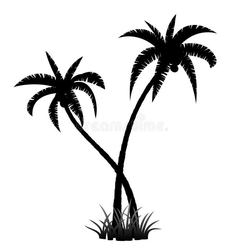 Silhouette de palmier illustration stock