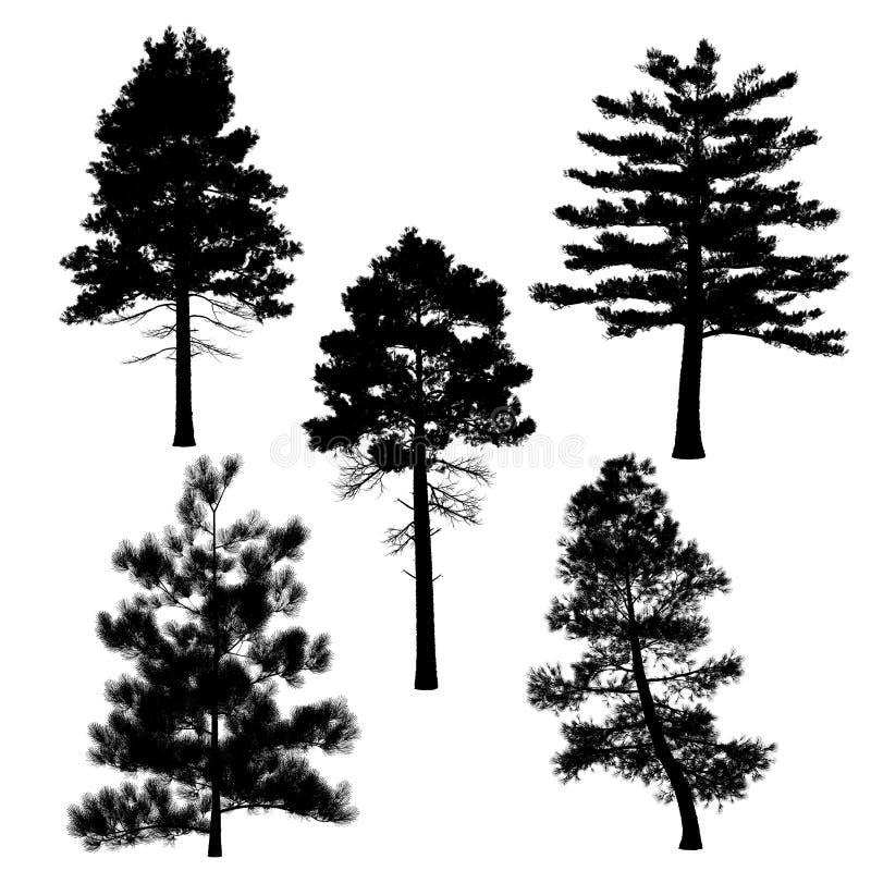 Silhouette de pin illustration de vecteur