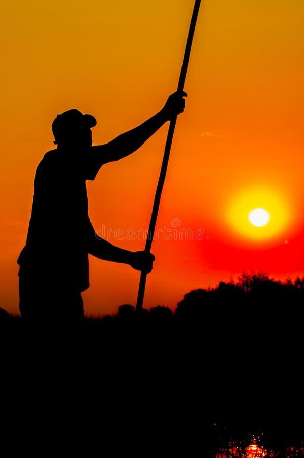 Silhouette de Poler dans le delta d'Okavango image libre de droits