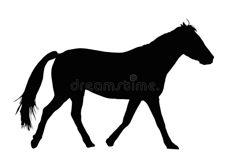 Silhouette de portrait de grand galoper de cheval illustration libre de droits