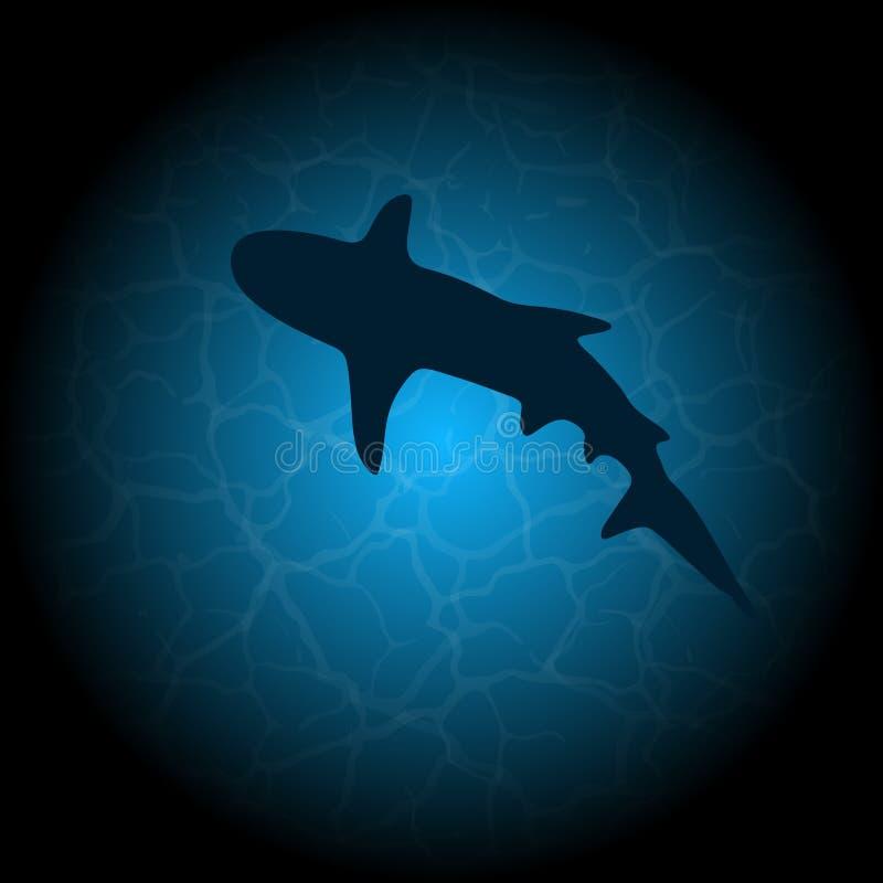 Silhouette de requin de l'eau bleue illustration stock