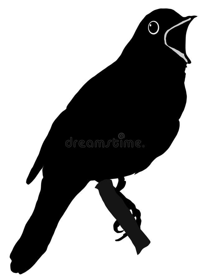 Silhouette de rossignol illustration libre de droits