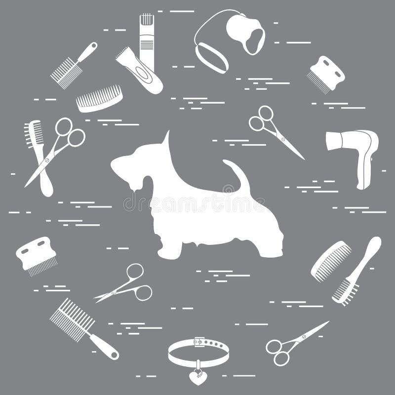 Silhouette de terrier écossais, peignes, collier, laisse, rasoir, sèche-cheveux illustration de vecteur