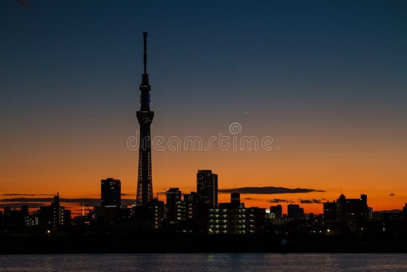 Silhouette de Tokyo Skytree photographie stock libre de droits