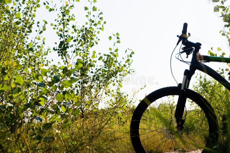 Silhouette de vélo de montagne photographie stock libre de droits