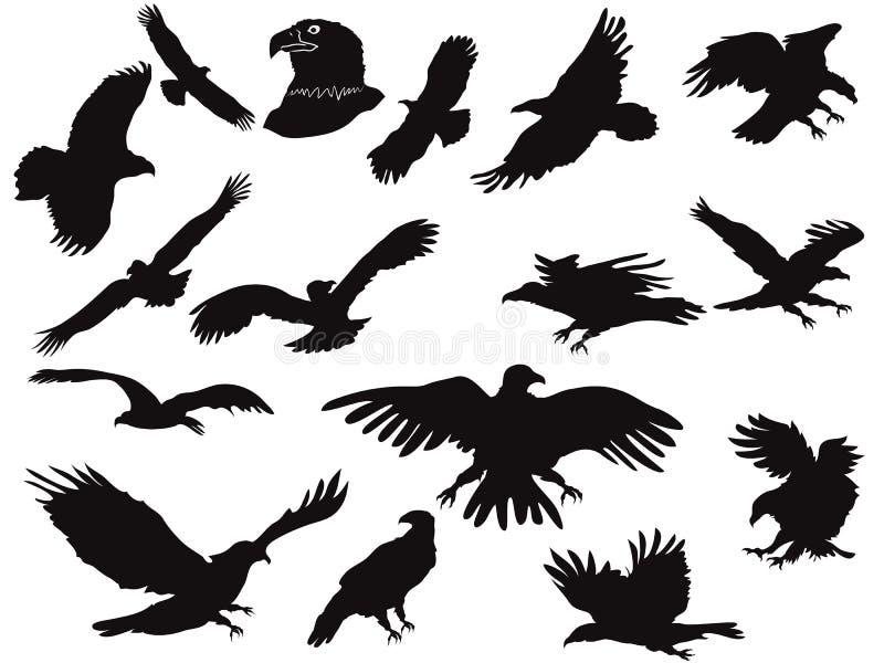 Silhouette des aigles illustration stock