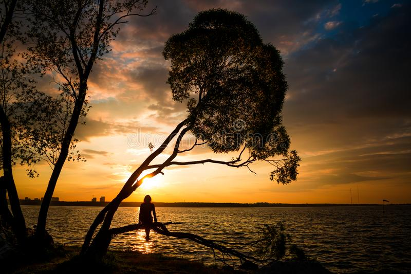 Silhouette des jeunes femmes s'asseyant sur l'arbre au coucher du soleil photographie stock libre de droits