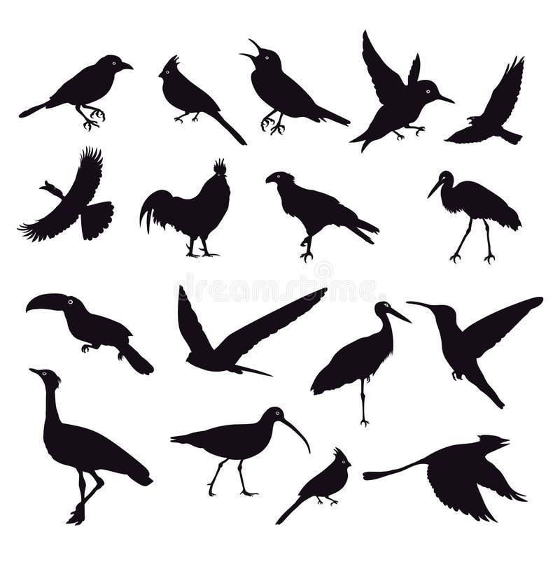 Silhouette des oiseaux sur le blanc illustration de vecteur