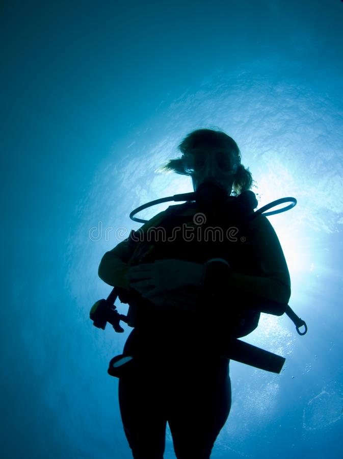 Download Silhouette of a diver stock photo. Image of underwater - 15290148