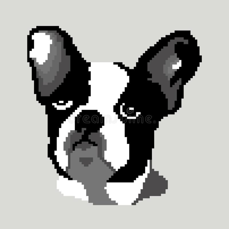 The silhouette of a dog of the French Bulldog breed is a face whose head is painted in the form of squares, pixels. Image of a dog portrait breed French stock photos