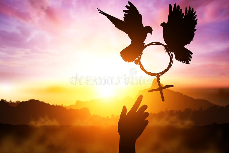 Silhouette du désir de deux coups de main à la colombe deux tenant la branche dans le vol de forme de symbole de Vénus sur le cie photographie stock libre de droits