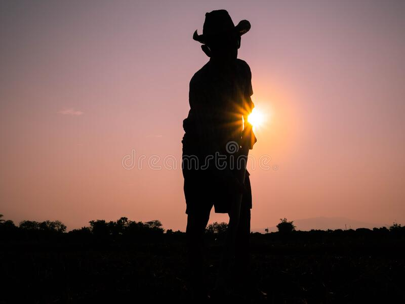 Silhouette of Elderly Asian farmers shoveling and prepare the soil with a spade for planting on sunset background stock photo