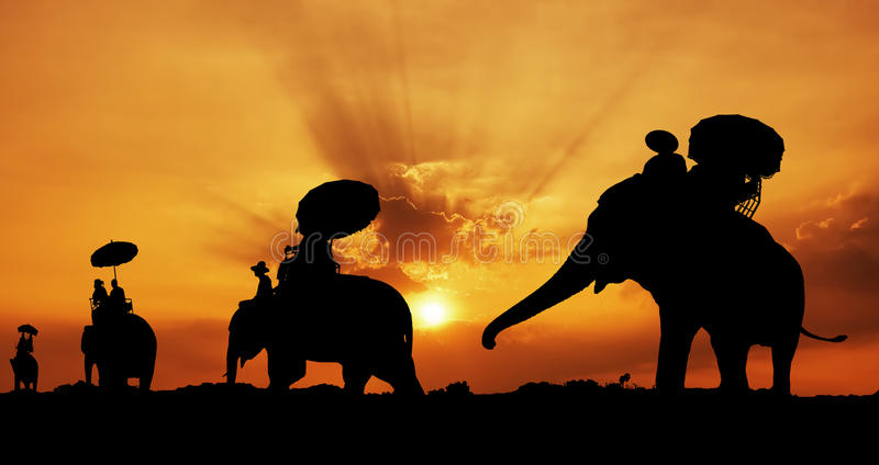Silhouette of elephants in thailand royalty free stock images
