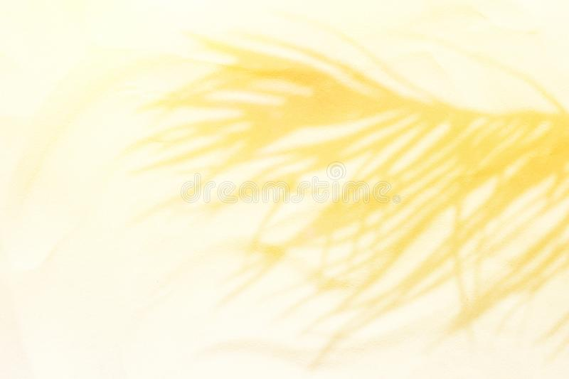 Silhouette en feuille de palmier d'ombre sur le sable de plage dans la fusée d'or de lumière du soleil Image minimaliste artistiq photographie stock libre de droits