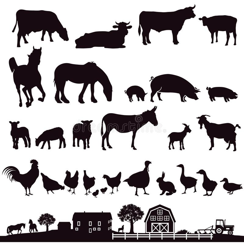 Silhouette of farm animals. Illustrated silhouette of farm animals and rural farm scene vector illustration