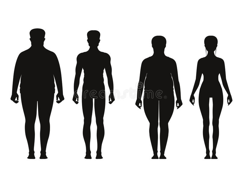 Silhouette of fat and thin peoples. Weight loss of overweight man and fat woman. Vector illustrations isolate royalty free illustration