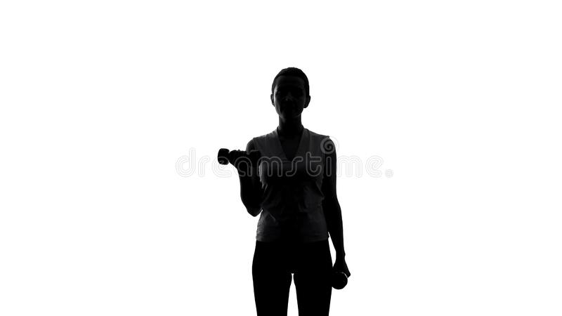 Silhouette of female athlete lifting dumbbells to lose weight, sport and workout stock image