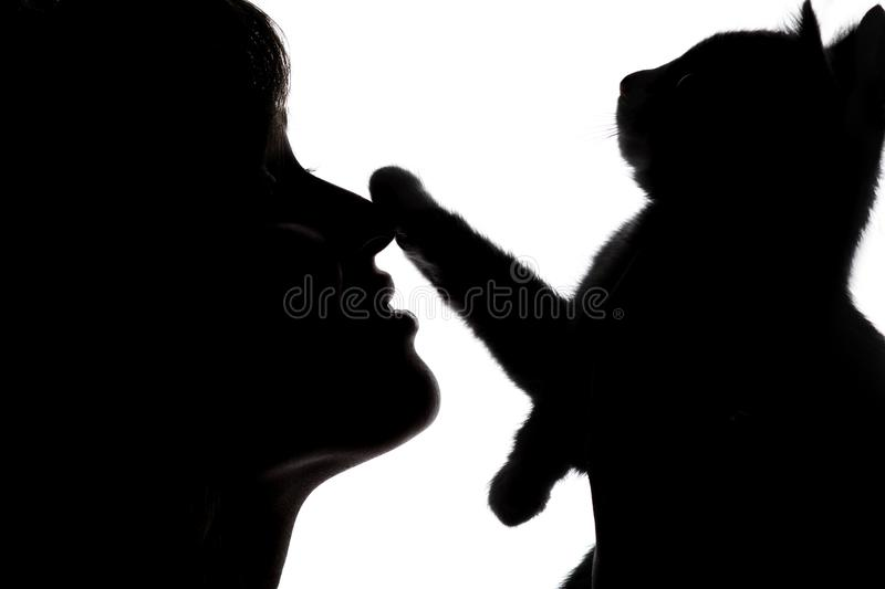 Silhouette of a female face with a small kitten that put a paw on the nose of girl on white isolated background royalty free stock images