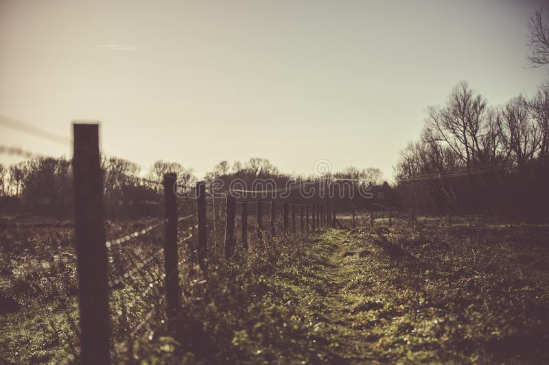 Silhouette Of Fence stock image
