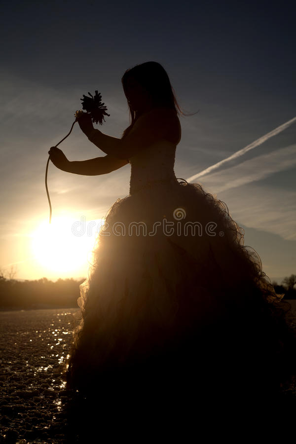 Silhouette formal ice flower out. A silhouette of a woman holding on to a flower in her formal dress on a frozen lake stock image