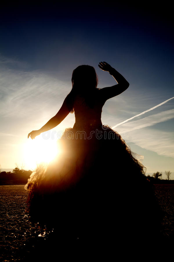 Silhouette formal ice one hand up. Silhouette of a woman in her formal dress with her arm up royalty free stock images