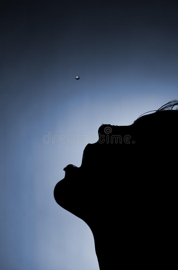 Silhouette Of A Girl Royalty Free Stock Photography