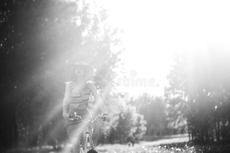 Silhouette of girl driving bicycle outdoor. Sunny summer lifestyle concept. Woman in dress and hat in Field with dandelions. Femal. E ride in park. Light effect royalty free stock image