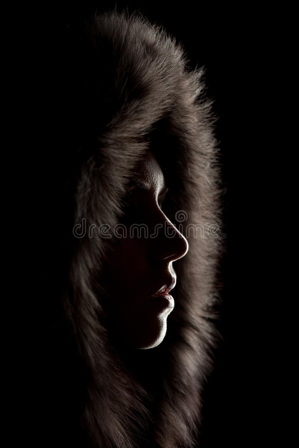Download Silhouette Of A Girl In The Hood Stock Photo - Image: 22624832