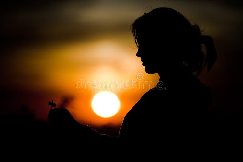 Silhouette of girl`s face holding cloverleaf during sunset - Ideal face shape. Silhouette of girl`s face holding cloverleaf during sunset. Black and orange royalty free stock image