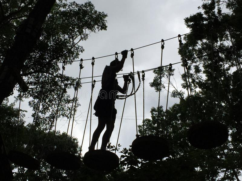 Silhouette of Girl in Treetop Obstacle Course royalty free stock images