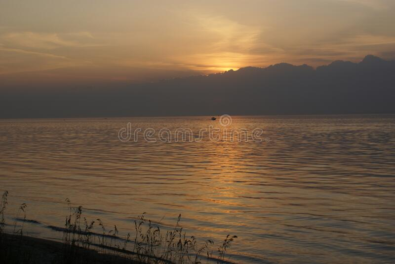 The silhouette of grasses against the background of the sun setting behind clouds over the sea. In the evening light you can see the silhouette of the grass stock image