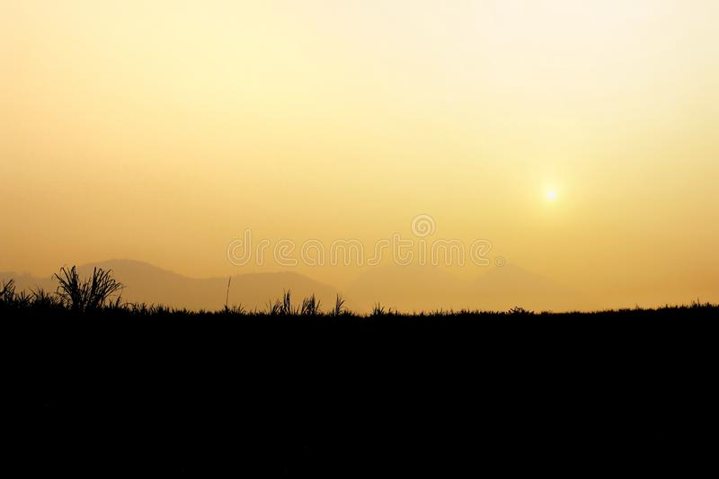 Silhouette of green cane farm. with sun morning in The hills in the fog. mountain landscape.  stock photos
