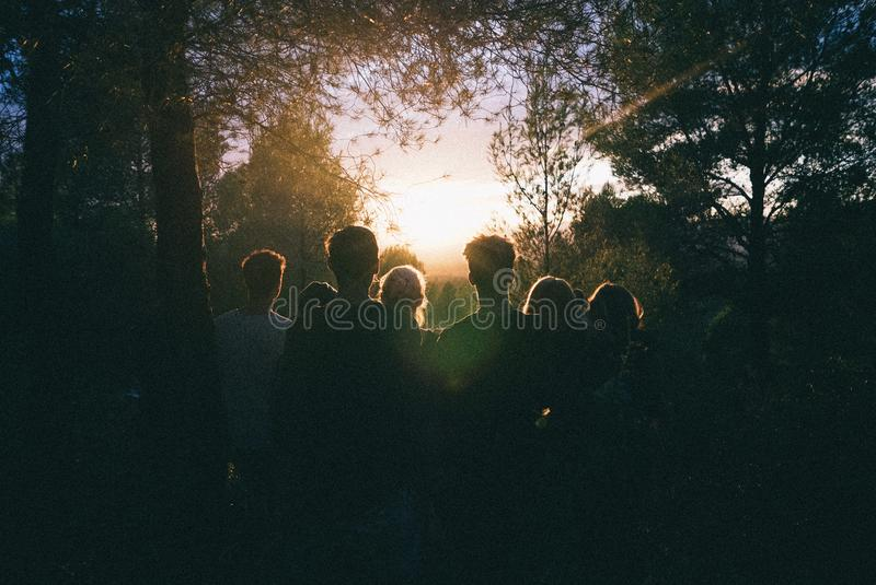 Silhouette of Group of People Between Tree Line stock images