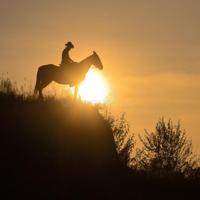 Silhouette of a guy sitting astride a horse over the edge of a cliff in the rays of the sun. stock images