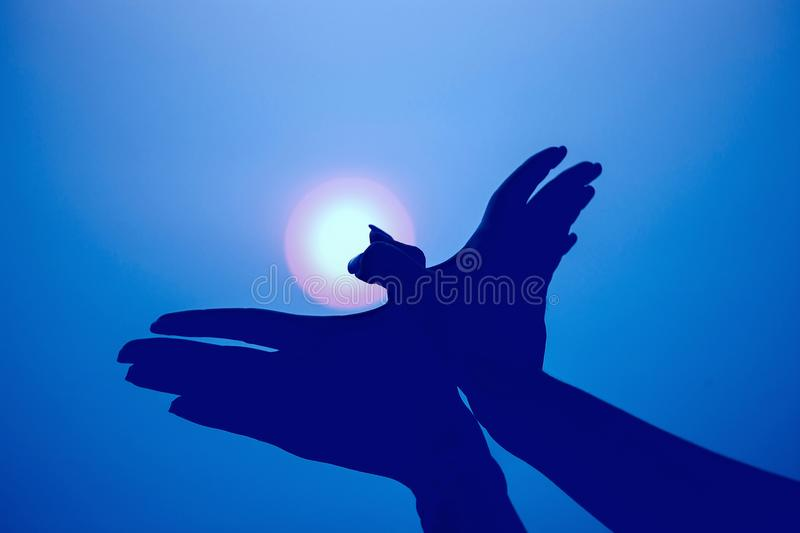 Silhouette of a hand gesture like bird flying on vintage blue sk stock photo
