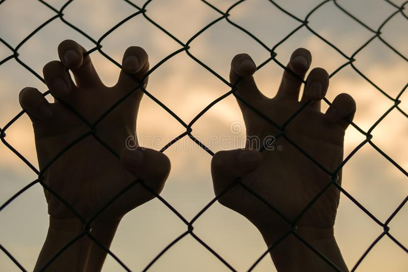 Silhouette of hands behind border or fence at sunset.  stock photography