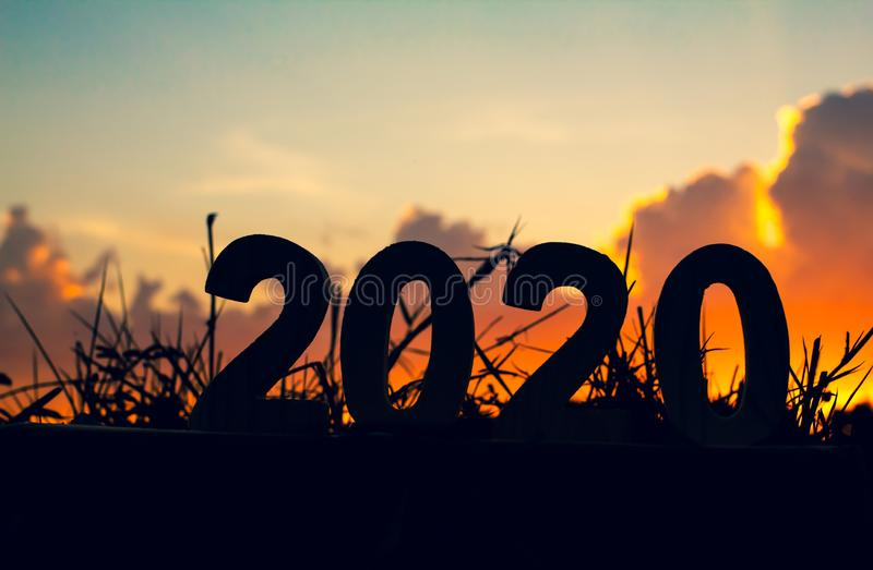 Silhouette 2020 Happy New Year of wooden number on grass with sky and cloud twilight beautiful nature background royalty free stock image