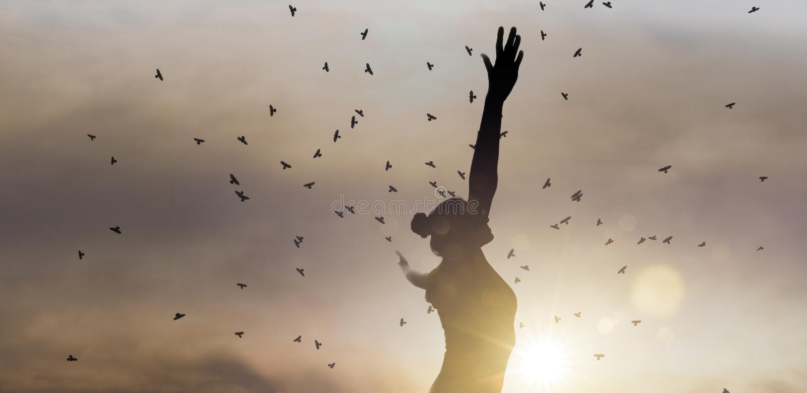 Silhouette of a happy woman with arms ahead royalty free stock image