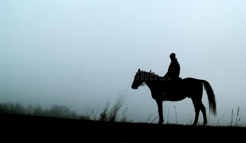 Silhouette of horse with man stock photos