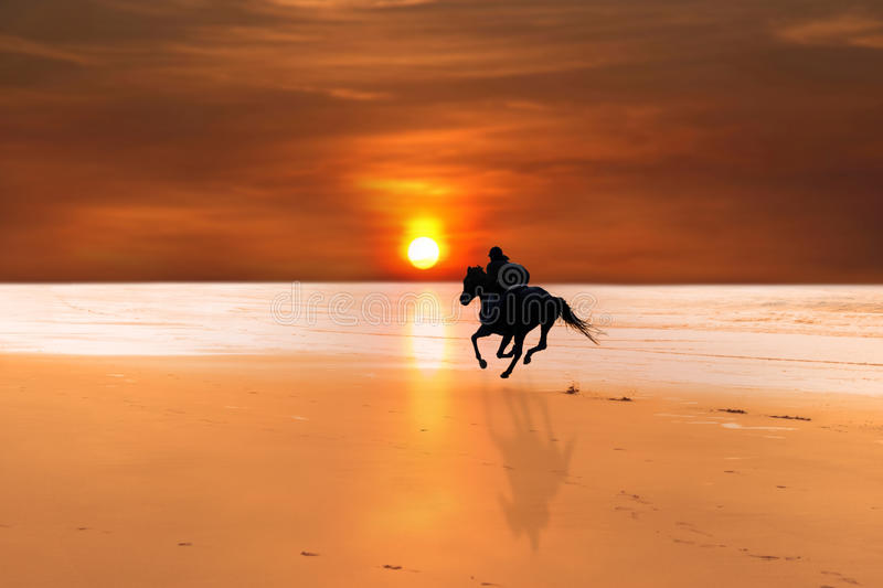 Silhouette of a horse and rider galloping royalty free stock images